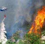 ETSN: Son günlərdə müşahidə olunan meşə yanğınları ilə bağlı şübhəli şəxslər müəyyən edilib